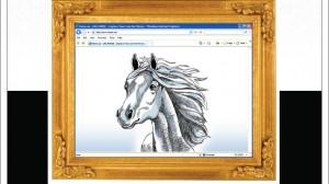 horse.ae